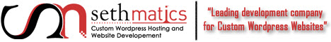 Sethmatics - Custom WordPress Hosting and Website Development